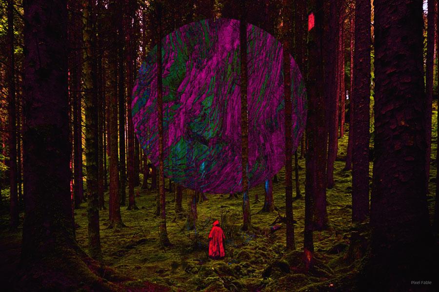 Navigator_in_Forest_V01